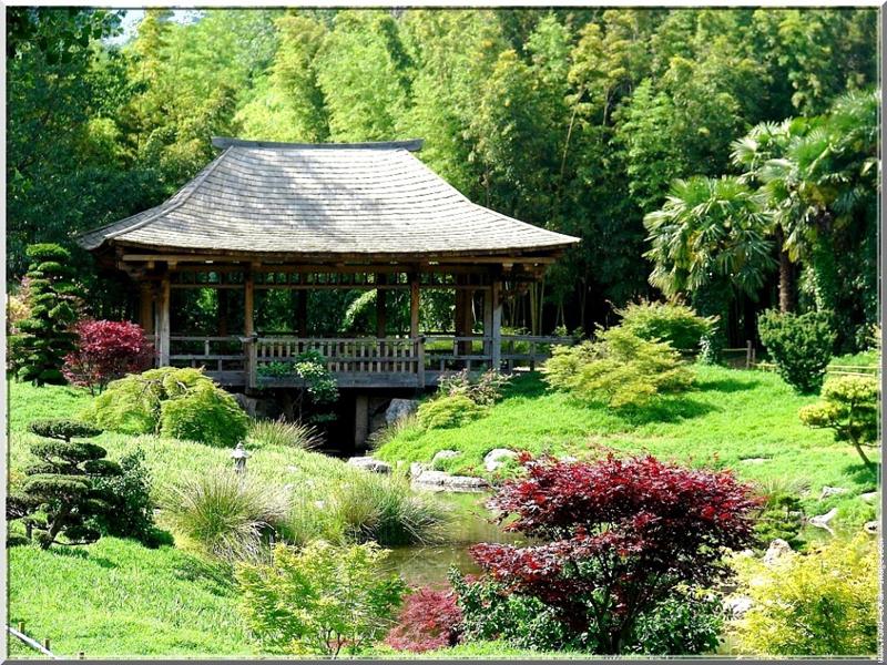 Les sites visiter autour de vacanc ze - La bambouseraie a anduze ...